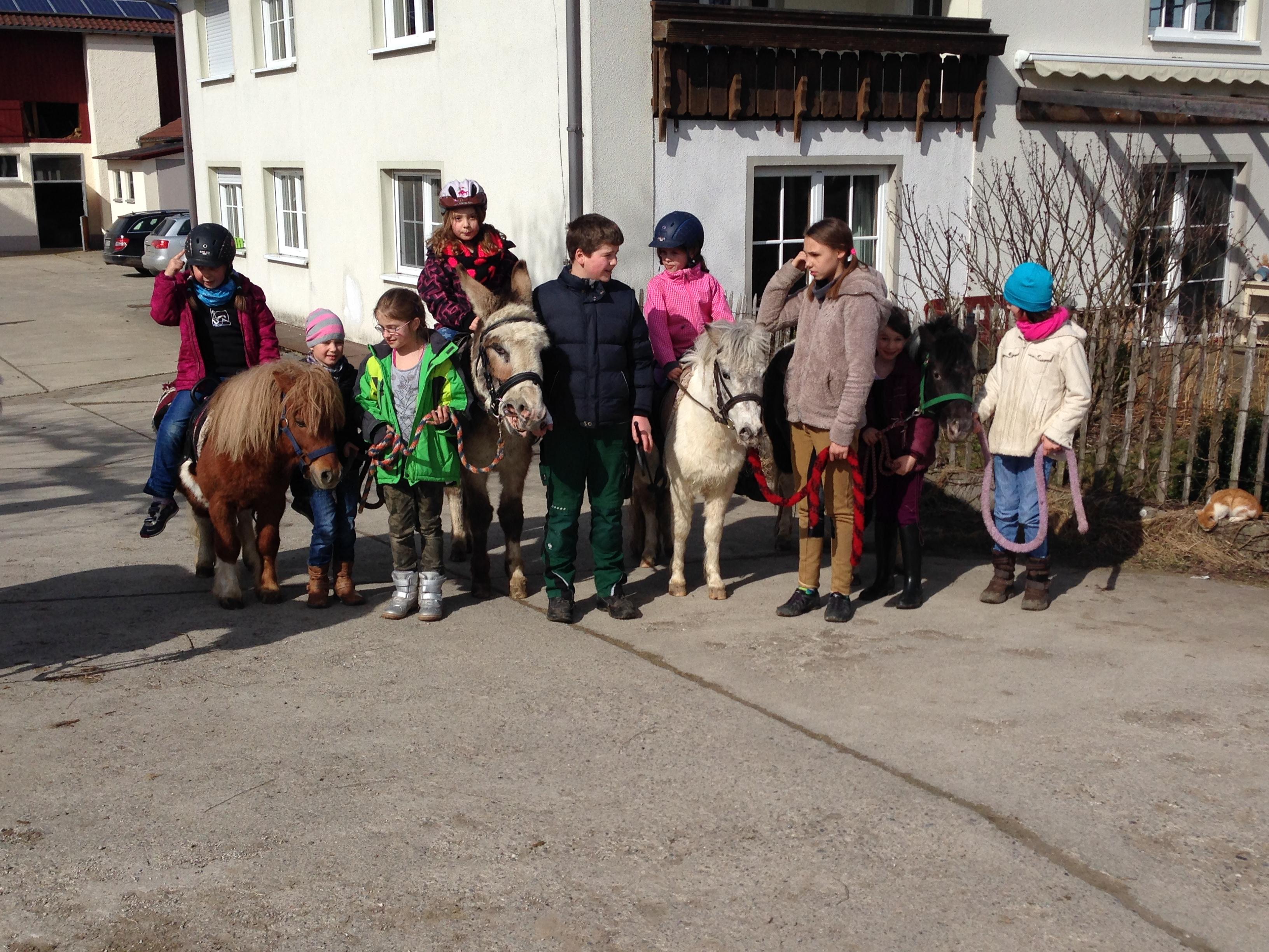 Ponybilder 028.JPG