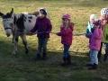 Ponybilder 092.JPG
